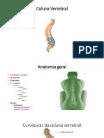 coluna vertebral.pptx