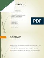 diapositivas de las dimensiones de la practica docente