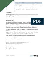 fases e informe auditoria