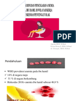 ppt anemi bumil