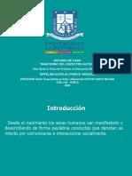 Estudio de caso defensa 6 enero.ppt