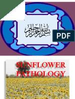 sunflower presentation (PP)