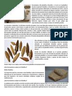 Herramientas del paleolitico Utensilios y el arte en el paleolítico