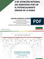 Protocolo Rabia (APTR).pdf