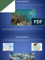 Presentación paleozoica