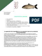 PECES PDF