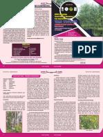 ENVIS Newsletter Final (2)_compressed.pdf