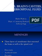 Meninges, Brain's cavities, and Cerebrospinal fluid_dr. Djoko P. oK