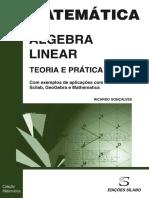 Algebra Linear - Teoria e Prativa