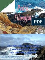 PedraFilosofal