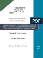 Willis PorattiGraciana.pdf-PDFA.pdf