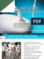 diapositivas de tecnologia de lacteos