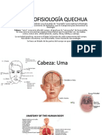 2. 2 fisiologia expo2 etnociencia.pptx