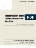 The Morphology and Varietal Characteristics of the Rice Plant (TB4)