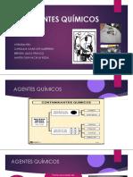 AGENTES QUIMICOS.pdf