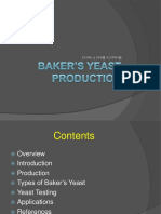 yeast-production