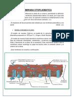 Membrana Citoplasmatica(PDF)