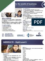 NZMA Business Diploma - Level 5 & 6 - Chinese
