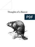 Thoughts of a Beaver