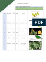 TABLA DE MACRO Y MICRO NUTRIENTES.docx