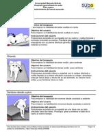 plan casero valentino castro.pdf