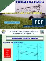 PÉRDIDAS DE CARGA EN TUBERÍAS.pdf