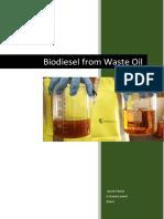 Biodiesel Business Case Draft