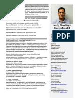 CV Andy Gonzales del Valle -  2019.docx