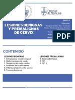 EQUIPO 4 LESIONES BENIGNAS PREMALIGNAS CERVIX