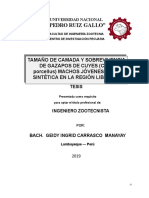 TESIS CORREGIDA HEYDI presentada-1