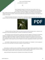 Cuentos y leyendas del Estado Portuguesa.pdf