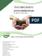 Slide-Cultivo Orgânico de Plantas Medicinais
