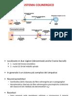 B1-1a - Il sistema Colinergico (4-11-2019)