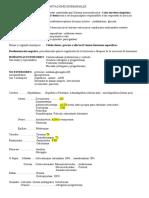 T6 Respuestas y adaptaciones hormonales