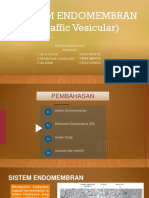 PPT Sistem Endomembran KEL 1.ppt