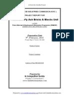 PMEGP FLYASH BRICKS PROJECT REPORT 4-24.pdf