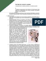 356385697-APARATO-LAGRIMAL.docx