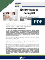 FORMACION DE SEGURIDAD Y SALUD LABORAL- 12.- Enfermedades en la piel