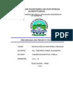 PROGRAMA DE PRODUCCION 1.docx