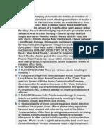 che 110 environment  report.docx
