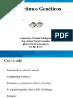 3.0 Algoritmos geneticos.pdf