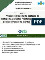 227528834-Aula-2-Aspectos-morfologicos-pdf.pdf