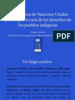 MECANISMOS DDHH_PUEBLOS INDIGENAS