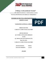 V.3 INFORME FINAL  CESAR CARRASCO