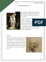 CATEGORIAS ESTETICAS.pdf