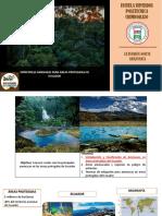 Principales amenazas a la biodiversidad del Ecuador