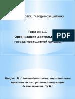презентация Организация ГДЗС 2019.pptx
