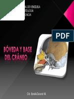 Boveda y Base Del Craneo Ucv