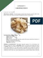 Mannual PCI.docx