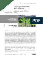 acacia mangium.pdf